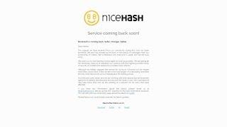 NiceHash возвращается, как получить 100ВТС и что будет с нашими биткоинами