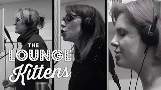 The Lounge Kittens - Africa (Toto cover - Official Video)