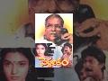 PEDDARIKAM Full Length Telugu Movie    Jagapathi Babu    Sukanya - TeluguOne