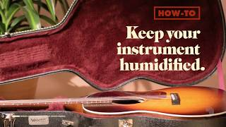 Watch the Trade Secrets Video, How-To Keep Your Guitar Humidified