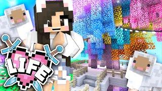 💙Decorating my House + Building a Rainbow Tree! Minecraft X Life Ep.34