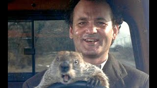 The Sarcastic Humor of Bill Murray