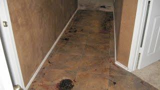 Jodi Arias Blood Spatter expert