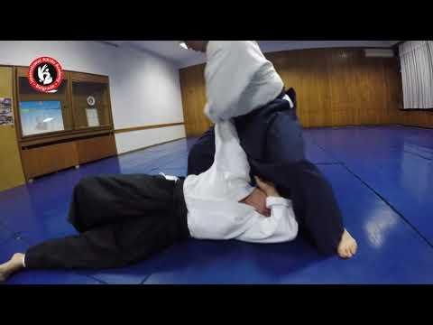Aikido akademija   Snežana Milenković & Vladimir Šakota   Aikido za odrasle