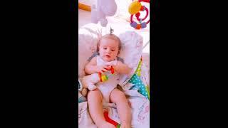 Bingo-Nursery Rhymes Kids Song - Funny Kids Video