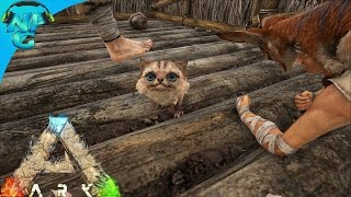 Ark Scorched Earth Jerboa Baby Breeding E24 Scorched Earth Map