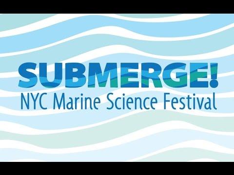 NY1 Submerge! Segment
