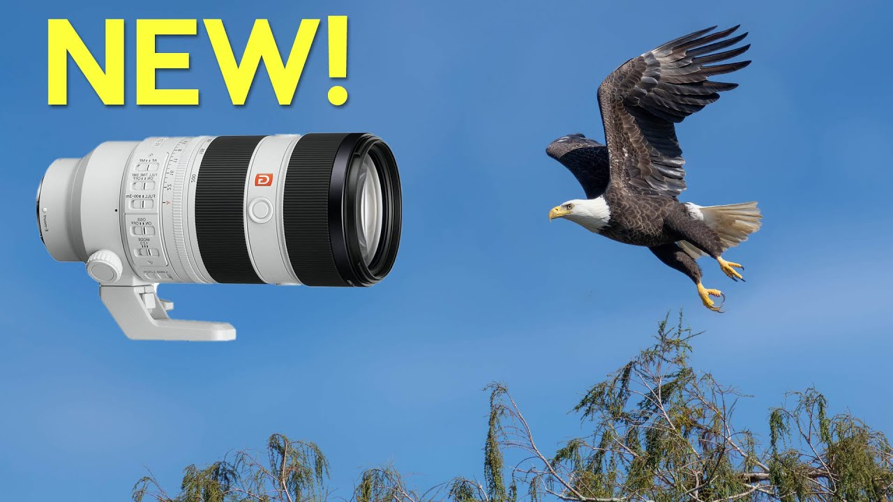 Wildlife Hands On - Sony's New 70-200mm First Impression