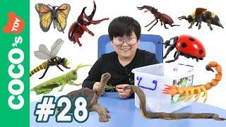 #28 곤충과 파충류, 절지동물이 싸우면 과연 누가 이길까?! insect vs reptile, an arthropod (Collecta figures)