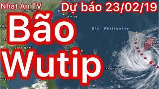 Dự báo thời tiết ngày 23 tháng 02 năm 2019 | thời tiết 3 ngày