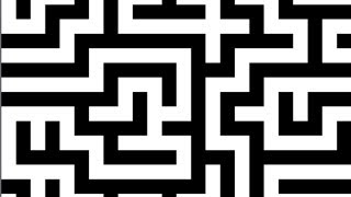 WORLD'S LARGEST MAZE -- DONG