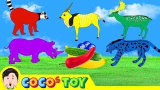 한국어ㅣ기분에 따라 색이 변하는 동물들, 색깔놀이, 어린이 동물 만화, 동물이름 외우기, 컬렉타ㅣ꼬꼬스토이