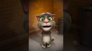 Mèo hát bài người yêu cũ của khởi My ngô thạch thảo tường vy