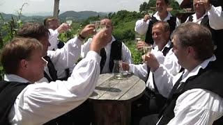 Rajko Suhodolčan i Oktet Kaj - Pod brajde