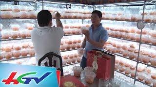 Thu nhập tiền tỷ từ căn phòng 9 mét vuông | BẢN TIN KINH TẾ NÔNG NGHIỆP - 27/9/2017