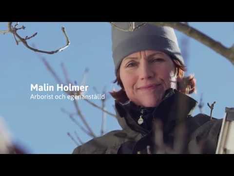 Malin Holmer, arborist och egenanställd hos Frilans Finans