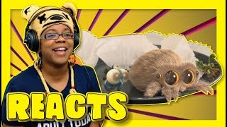 Lucas The Spider I'm Starving | Animation Reaction