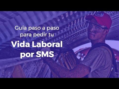 Descargar vida laboral SMS