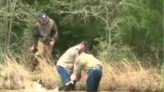 Pigmantv.com Hog Dog Chaos Multiple Boars Dangerous Hunt in Texas