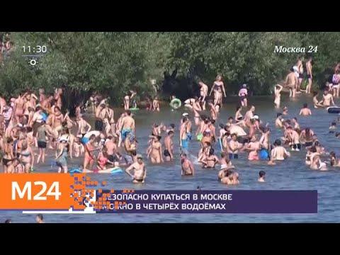 Четыре зоны отдыха подготовили к купальному сезону в Москве - Москва 24 photo