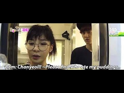 [2NEXO] EXO & 2NE1 Moments Part 8
