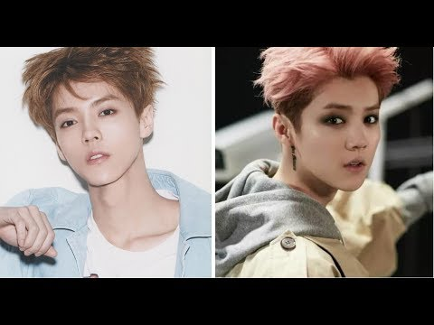 LUHAN EVOLUTION 2012-2017 (All MVs)