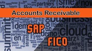 Sap FICO/ Accounts Receivable.
