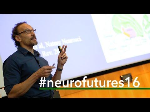 NeuroFutures 2016 | Claudio Mello