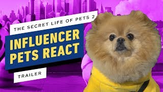 Pets React to The Secret Life of Pets 2 Trailer