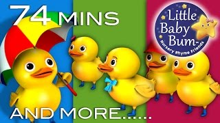 Five Little Ducks | Little Baby Bum | Nursery Rhymes for Babies | Videos for Kids - YouTube