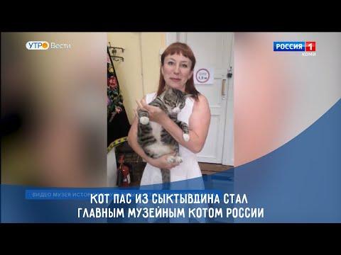 Кот Пас из Сыктывдина стал главным музейным котом России