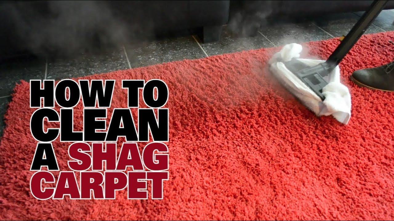 How To Steam Clean A Shag Carpet Dupray Steam Cleaners