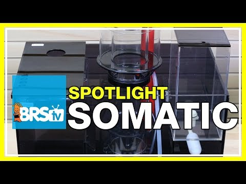 Spotlight on the Somatic 60, 90 and 120 sumps | BRStv