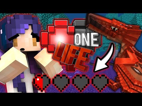 I HAVE HALF A HEART LEFT!! | Ep. 19 | One Life Minecraft SMP