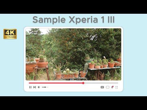 Test di ripresa da Sony Xperia 1 III in  …