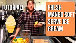 Make Soft Serve ice Cream With Fresh Mangos & A Stoelting E111 Machine