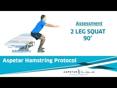 5. Assessment - DOUBLE LEG SQUAT→ 90°