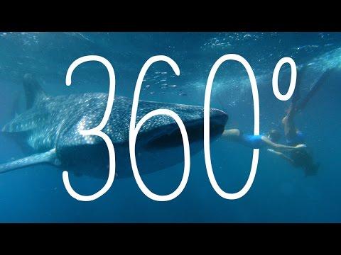360: Ningaloo Marine Park, Western Australia, Australia