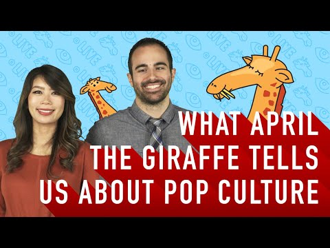 View in 2: What April the Giraffe tells us about Pop Culture | YouTube Advertisers