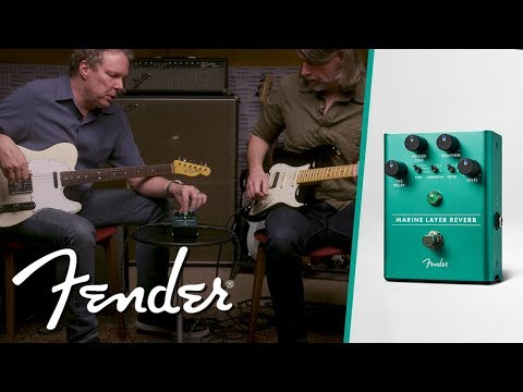 The Marine Layer Reverb | Effect Pedals | Fender