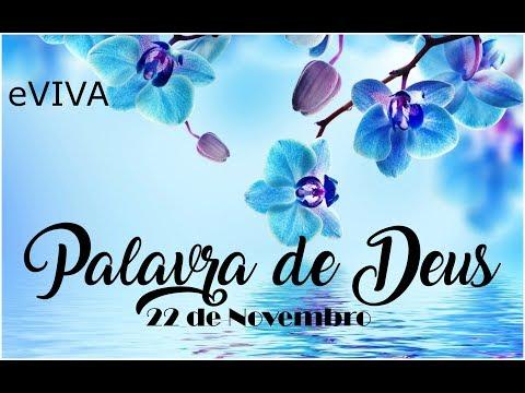 PALAVRA DE DEUS PARA HOJE 22 DE NOVEMBRO eVIVA MENSAGEM MOTIVACIONAL PARA REFLEXÃO DE VIDA