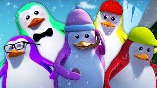 Năm Chú Chim Cánh Cụt Nhỏ | Vần Cho Trẻ Em | Five Little Penguin | Nursery Rhymes | Kids Tv Vietnam
