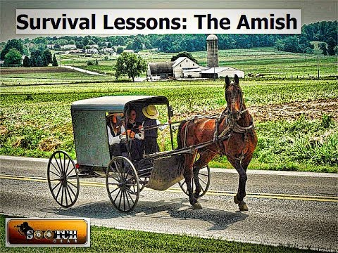 Survival Lessons from the Amish
