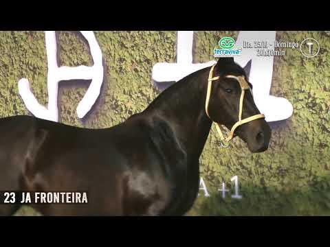 LOTE 23 - JA FRONTEIRA