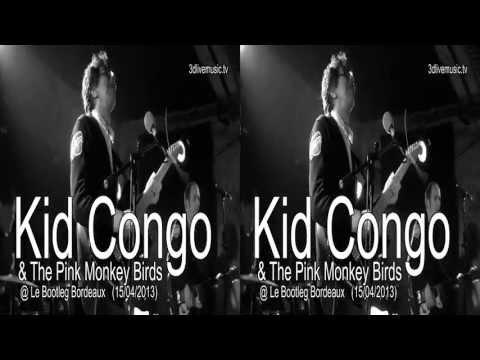 Kid Congo & The Pink Monkey Birds @ Le Bootleg Bordeaux (15/04/2013)