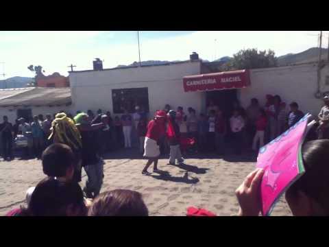 El torito irapeo 2012