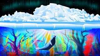 Những khu rừng mới dưới lớp băng Bắc Cực đang phát triển lớn hơn