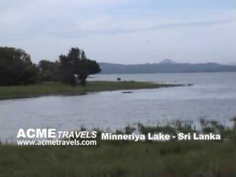 Minneriya Lake Sri Lanka Acme Travels