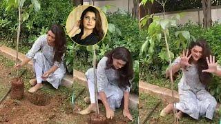 Payal Rajput accepts 'Green India' challenge..