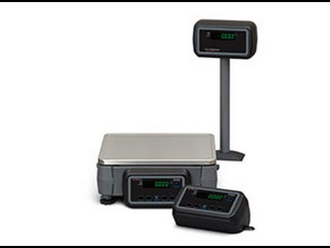 Overview of the ZP900 Postal Scale from Avery Weigh-Tronix